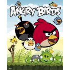 Merchandising ANGRY BIRDS - Mini Poster 40X50 - Group