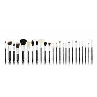 Boozy Cosmetics BoozyBrush 24 pc Precision Set
