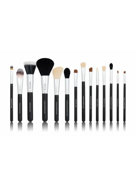 Boozy Cosmetics BoozyBrush 14 pc Classic Starter Set