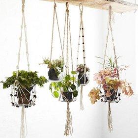 Plantenhangers