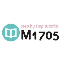 Tutoriel M1705
