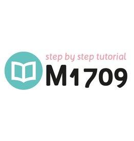 Tutoriel M1709