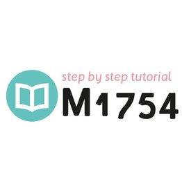 Tutorial M1754