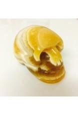 Schedel gele Calciet