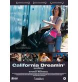 Lumière CALIFORNIA DREAMIN'