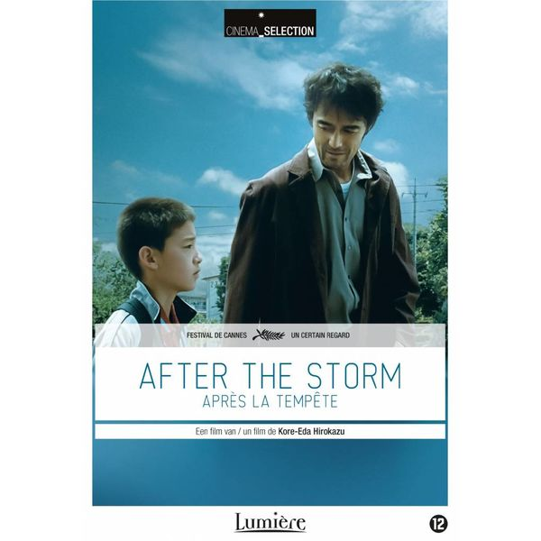 After the Storm | DVD