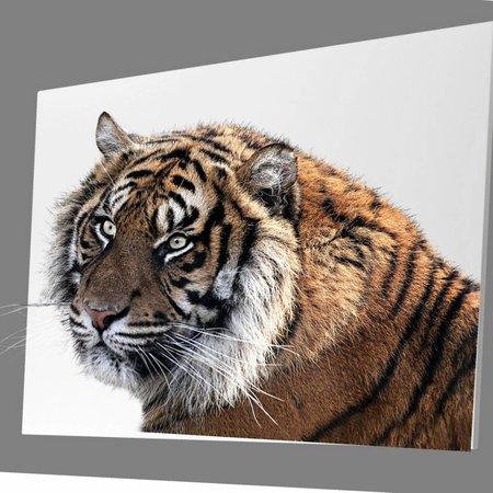 Ecaros  Jouw afbeelding op je infrarood paneel