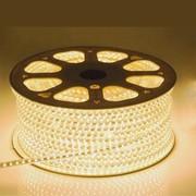 QUALEDY® LED Strip 230V - Wit - 14,4W/m