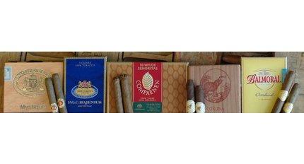 Dutch cigars