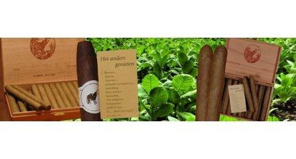 de Olifant cigar factory