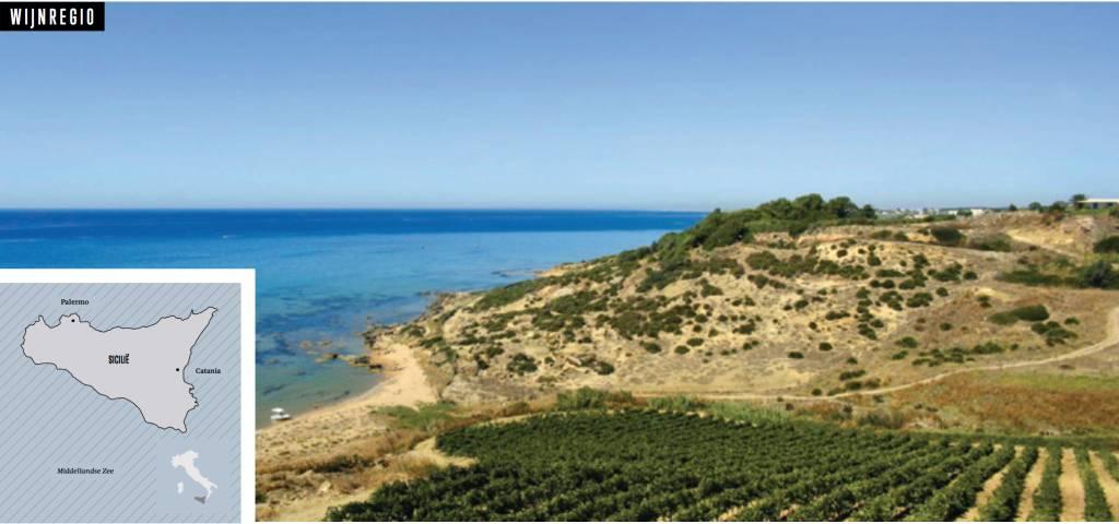 Sicilië - Wijngaard van Italië