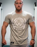 Alpha Fitted T-shirt Grey