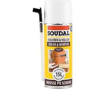 Montage& Isolatieschuim 300 ml