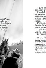 Don Quijote, el último caballero