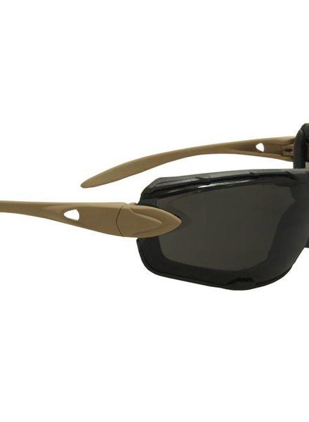 SwissEye bril Detection