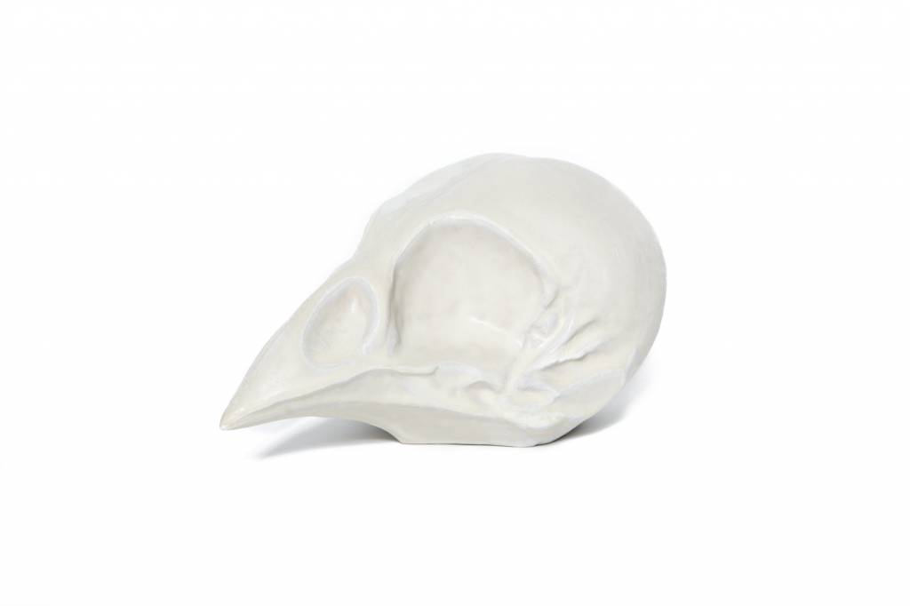 Lindform Bird Skull - White