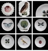 Astier de Villatte John Derian Saucer - Rose and Insect