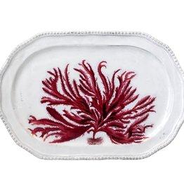Astier de Villatte John Derian Platter - Red Seaweed
