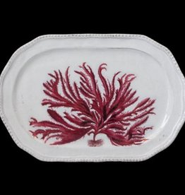 Astier de Villatte John Derian Red Seaweed Platter