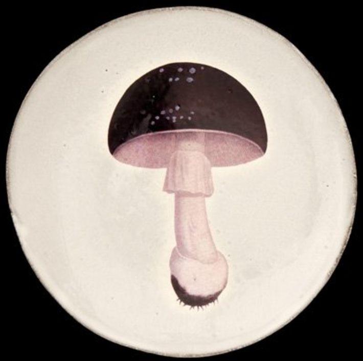 Astier de Villatte John Derian Plate - Agaric Fuligineux