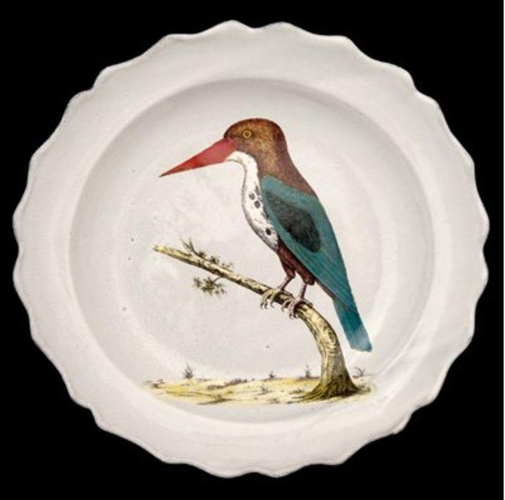 Astier de Villatte John Derian Plate - John Bengal Bird