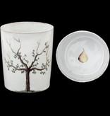Astier de Villatte John Derian Cup - Pear Tree