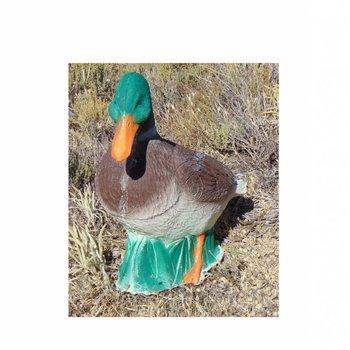 Imago3D Duck