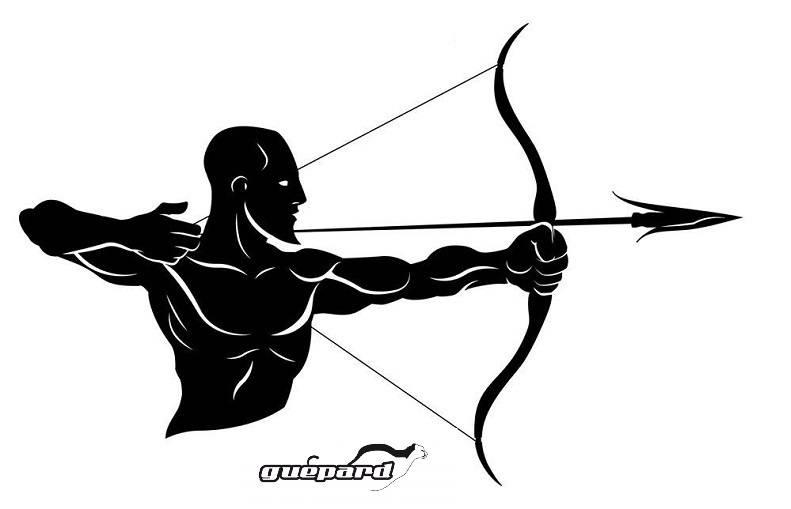 BowSets von Guepard Archery