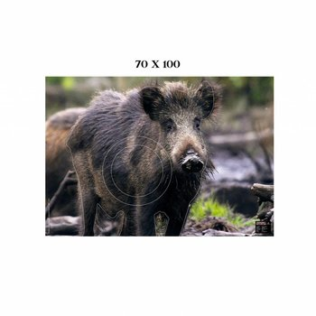 Maximal BIG GAME 70X100 WILD BOAR