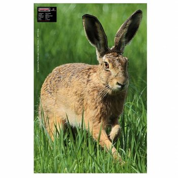 Maximal SMALL GAME 40X60 HARE ALERT