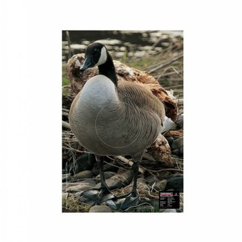 Maximal SMALL GAME 40X60 CANADIAN GOOSE ALERT