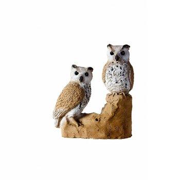 Imago3D Little Owls