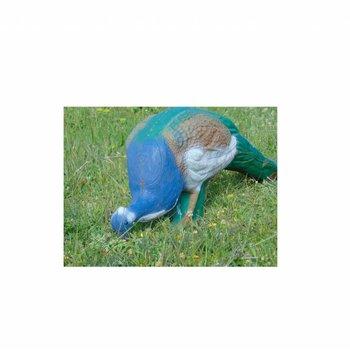 Imago3D Blue peafowl Blue peafowl