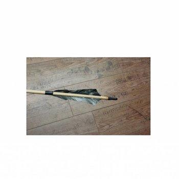 Iguanes.  Zederholz Fertig Pfeil 5/16 oder 11/32 mit 5 Zoll Sting Feder