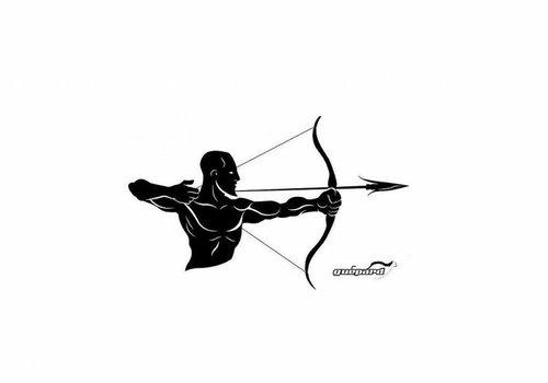 Archery Glasses