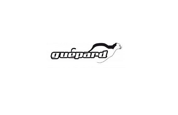 Traditionel Guepard