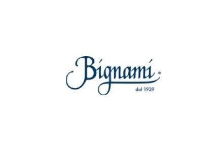 Bignamie