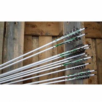 SkyArt Archery. Incognito 600