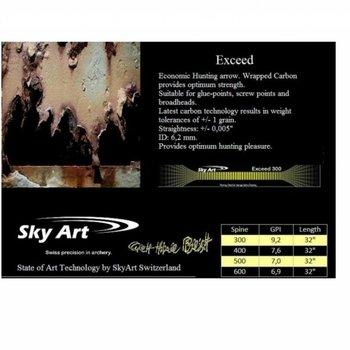 SkyArt Archery. SkyArt Exceed Hunting Pfeil