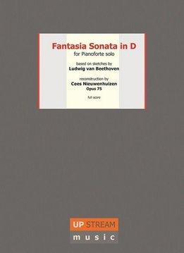 Upstream Music Beethoven & Nieuwenhuizen | Reconstructie Fantasie Sonate in D | Luxe uitgave