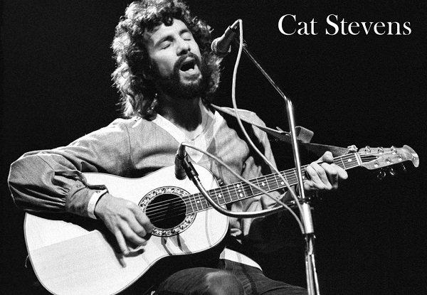 Stevens, Cat