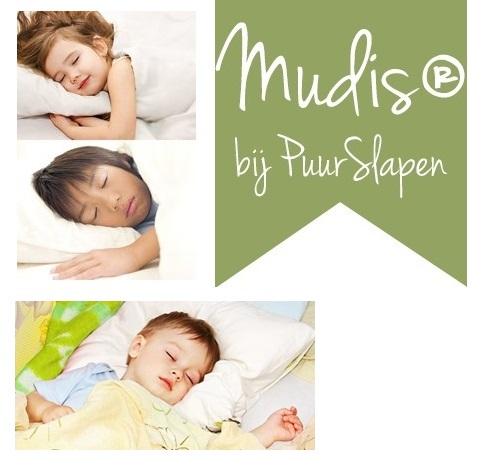 banner kussens volwassenen, puurslapen.nl