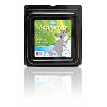 Blijkie Régulier gr Rat 150-250