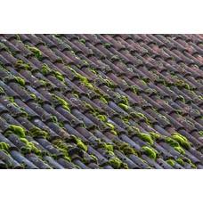 Grünbelagsentferner Dach