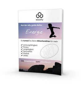 edubily edu_guide: Energie
