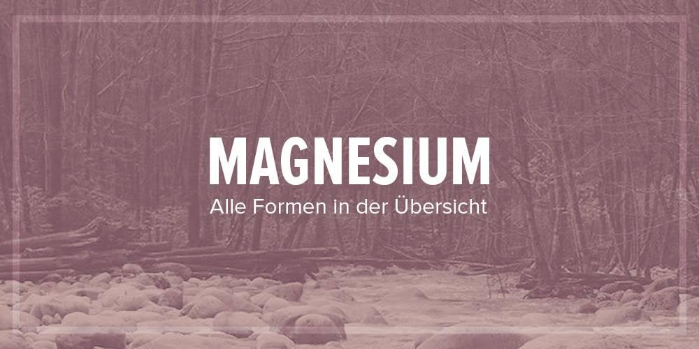 [Infografik] Magnesium-Formen in der Übersicht
