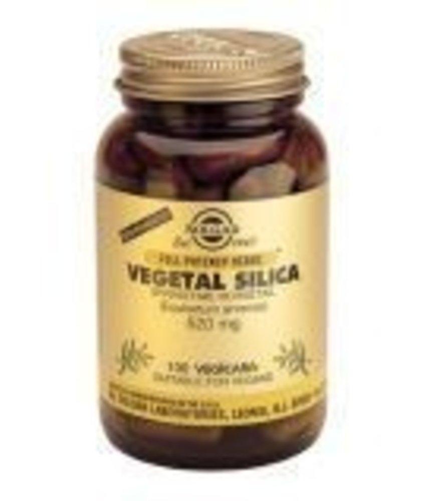 Solgar Solgar Vegetal Silica Paardestaart plantaardige capsules