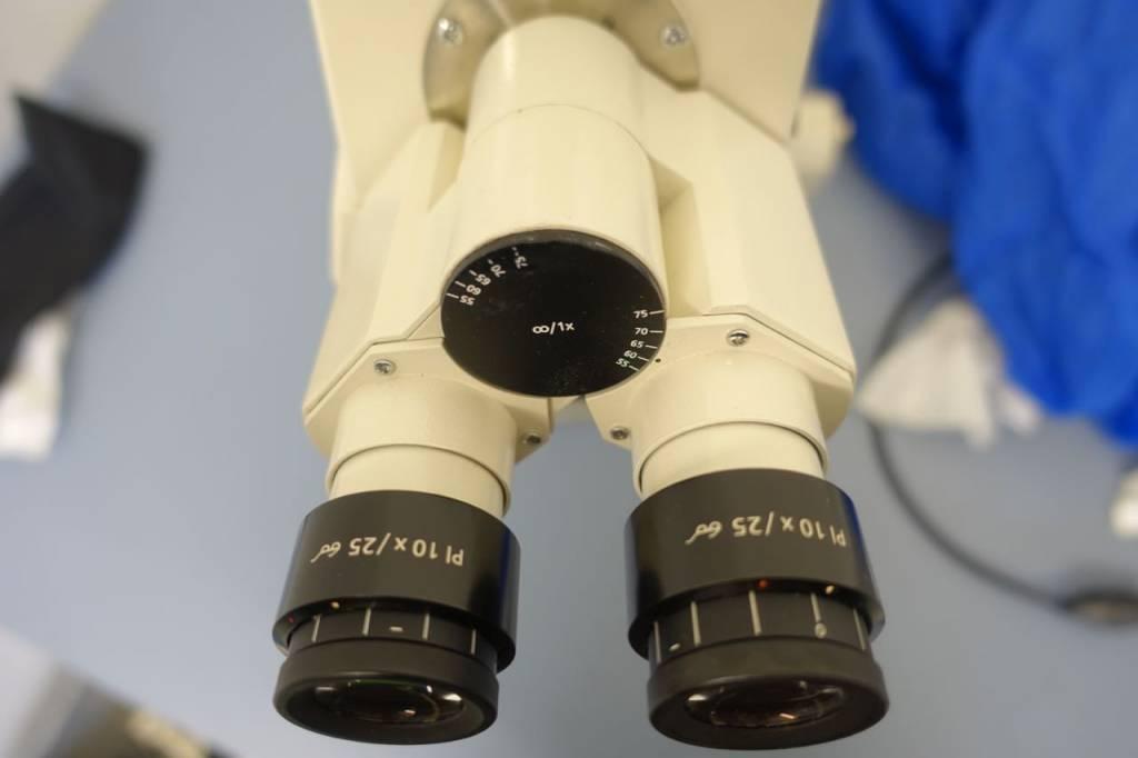Primo star mikroskopie