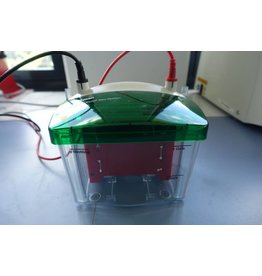 Bio-Rad BioRad Mini Trans-Blot® Electrophoretic Transfer Cell