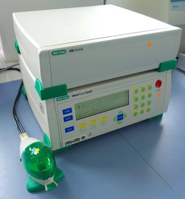 Bio-Rad Refurbished Bio-Rad Gene Pulser Xcell™ Eukaryotic System